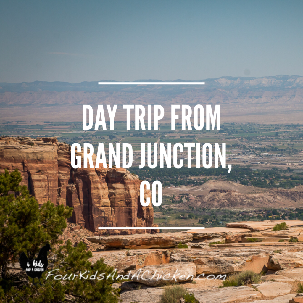 Day Trip Grand Junction, Colorado